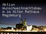 Aktion Wunschweihnachtsbaum im Alten Rathaus Magdeburg