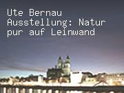Ausstellung von Ute Bernau: Natur pur auf Leinwand