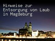 Hinweise zur Entsorgung von Laub in Magdeburg