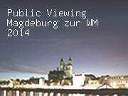 Public Viewing Magdeburg zur WM 2014